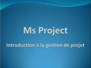support-ms-project